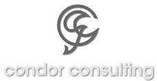 Condor Consulting - 