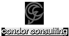 Condor Consulting -